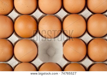 One Egg Missing