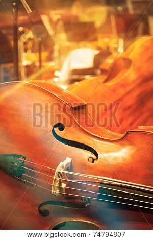Contrabass on stage