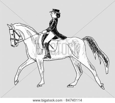 rider on the horse - hand-drawn illustration