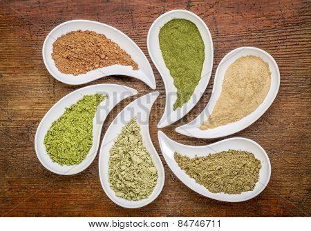 nutrition supplement abstract - a top view of teardrop shaped bowls of various powders - cacao, wheatgrass, maca root, hemp protein, kelp, moringa leaf