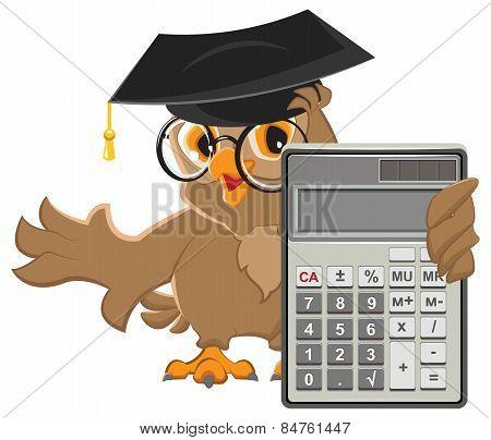 Owl teacher holding calculator