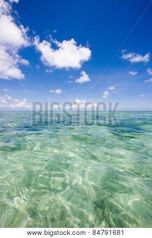 Small breeze of the Indian Ocean, Kuramathi island