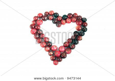 Heart Shape Ripe Red Cranberry Over White