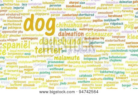 All Types of Dogs and Every Breed as Concept background