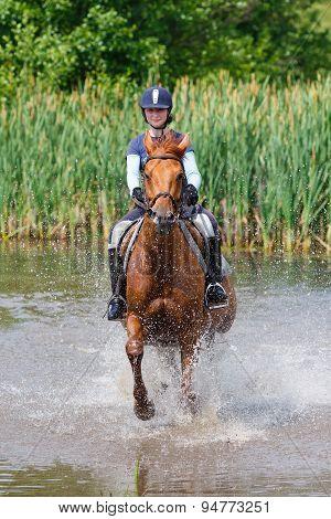Horserider In The Lake