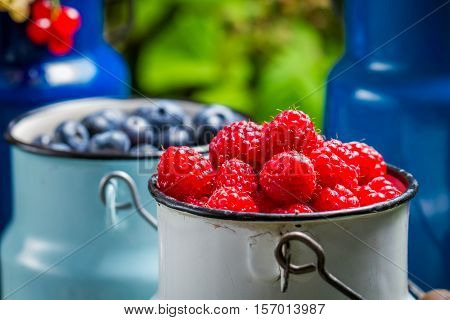 Closeup Of Fresh Wild Berries In Churn