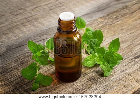 Essential oil of peppermint in a small bottle with fresh mint, selective focus