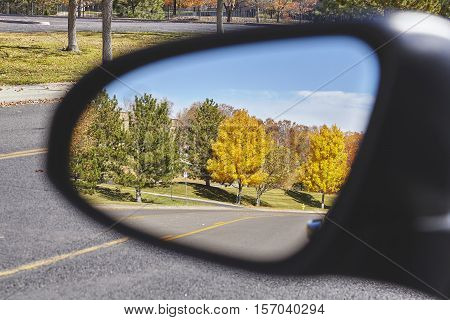 Autumn Trees Reflected In Car Wing Mirror.