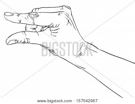 Hand showing small value or use it to put some small object between the fingers detailed black and white lines vector illustration hand drawn.