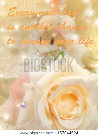 Inspirational motivating quote on sweet dreamy and soft focus background blooming of yellow beige rose