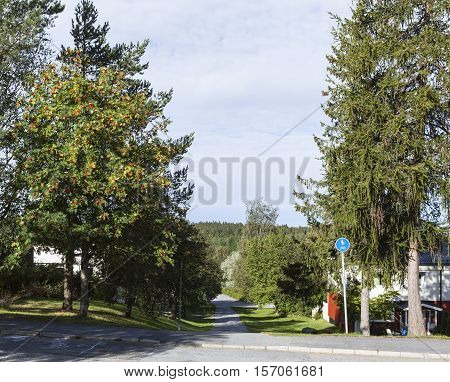 UMEA, SWEDEN ON AUGUST 30. View of a modern residential settlement, street, path, housing on August 30, 2016 in Umea, Sweden. Trees and bushes along the path, footway. Editorial use.