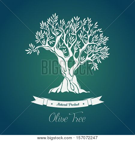 Bottle sticker with olive oil greece tree on it. Olive grove sign or banner, logo or badge with ribbon below. May be used for olive agriculture theme, shop or store logo, tree with branches label.