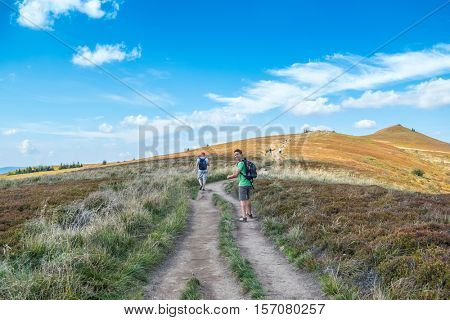 Tourists trekking on Polonina Wetlinska, Bieszczady mountains, Poland