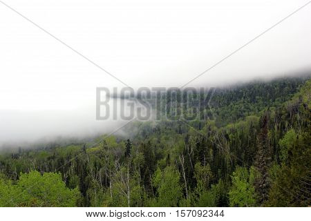 Vivid tree covered mountain scenic overlook at Mount Josephine with thick fog