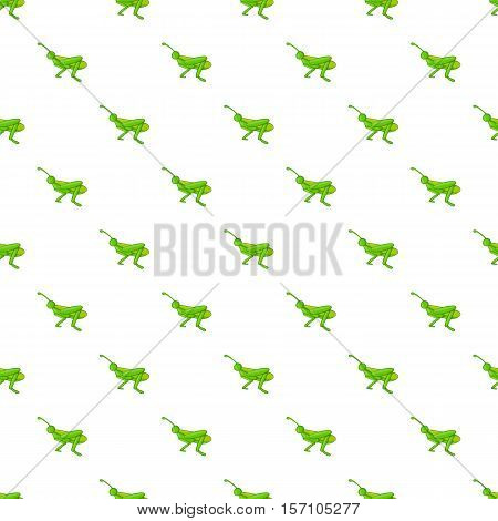 Grasshopper pattern. Cartoon illustration of grasshopper vector pattern for web