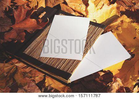 Album For Photos In Bright Autumn Foliage