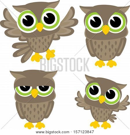 set of four cute owls isolated on white background