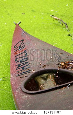 a Old red canoe ashore the pond