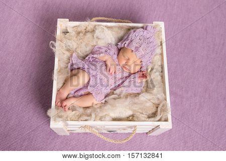 sweet newborn girl sleeping in square cot on violet background and cute hat with costume