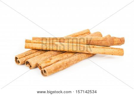 The dry Cinnamon isolated on white background