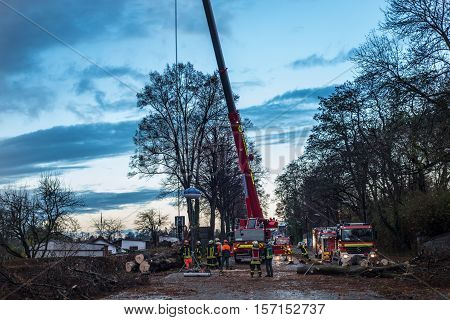 Dortmund, Germany - November 18, 2016:  Firefighter of fire brigade Dortmund sawing through a tree trunk and cleaning up a street after a tree has been chopped down during a severe thunderstorm. This happens on a national street very close to a freeway