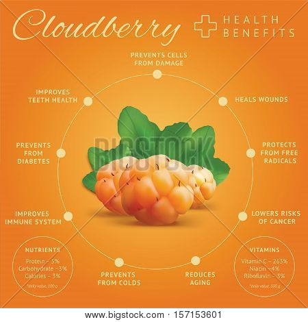 Ripe cloudberry health benefits infographics. Creeping raspberry with yellow orange berries. Bakeapple or salmonberry icon.Vector illustration.
