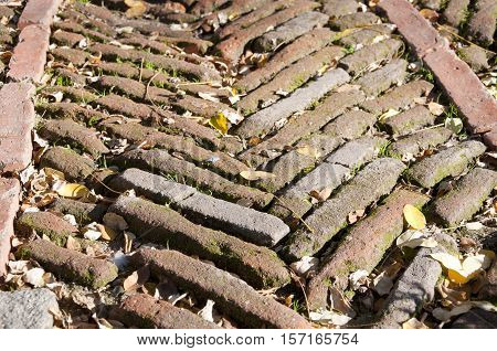 Old solid bricks on the floor of an ancient aristocratic garden in Madrid Spain.