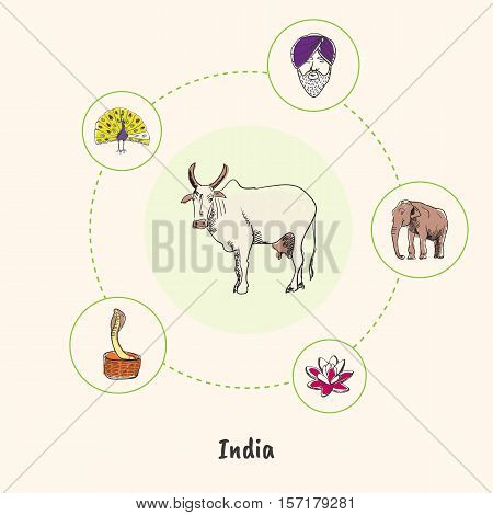 Attractive India. White cow colorized doodle surrounded elephant, lotus flower, cobra in basket, peacock, man in turban hand drawn vector icons. Indian cultural, nature symbols. Travel in Asia concept
