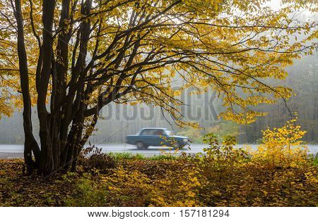 A car traveling quickly on the road autumn