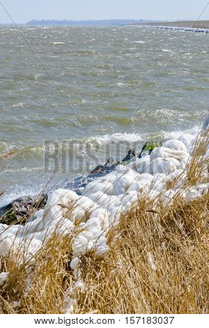 Extreme Ice Storm Hits Lake Shore. Thick ice coats the shore of a dutch lake Netherlands