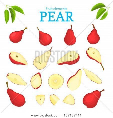 Vector set of red fruits. Pear fruit, whole, peeled, piece of half, slice, leaves, seed. Collection of delicious red pears designer elements for use in packaging design projects flyer healthy eating