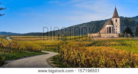 Hunawihr, Alsace Vineyard, France