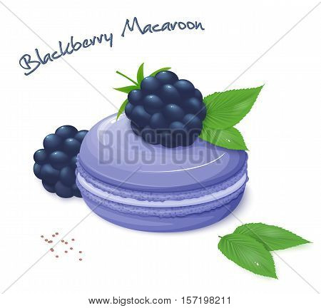vector illustration of realistic isolated blackberry macaroon with fresh ripe blackberry berries and leaves.