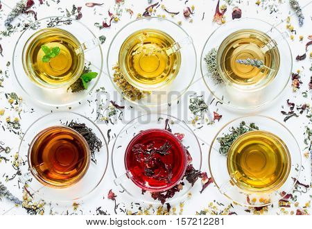 Six cups with different types of tea black green hibiscus chamomile peppermint lavender on white background of scattered tea leafs. Six types of tea on a white background of scattered tea leafs.