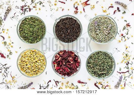 6 cups with different types of tea leaves black green hibiscus chamomile mint lavender on white background of scattered tea leafs. Tea collection of six different types of tea leafs. Horizontal.