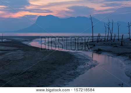 Sunset on a muddy mangrove tree area at low tide, Bako national park, Malaysia, Borneo