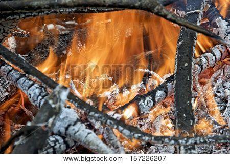 Close-up photo of outdoor bonfire. Smoldering ashes of a bonfire.