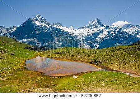 Small Colored Lake Near Bachsee, Schreckhorn