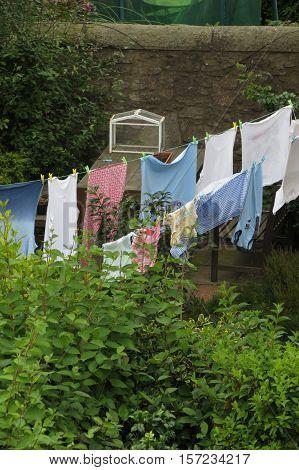 Clothesline aka washing line in a garden