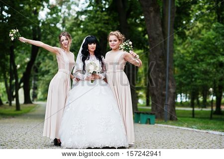Fine Bride With Bridesmaids At Beige Dress At Path On Park With Bouquets On Hands.