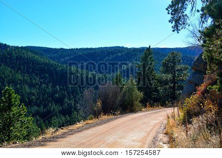 Unpaved Dirt Mountain Road on the Edge of a Cliff in a Pine Tree Forest
