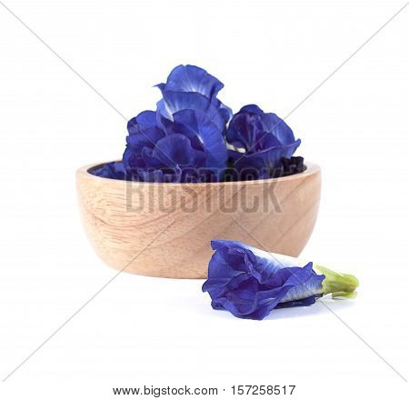Blue Pea Butterfly Pea Close Up Background
