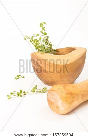 Fresh Oregano In  Wooden Mortar With Pestle On Withe Background.