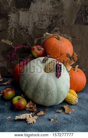 Autumn composition with autumn fruits, corn and pumpkins