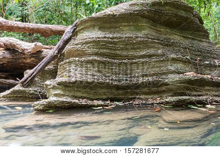Rock eroded by water in forest, rock eroded