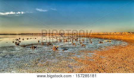 Najaf sea or Salam lake shore sunset An-Najaf Iraq