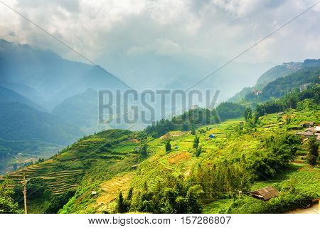Beautiful View Of Rice Terraces At Highlands. Sapa, Vietnam