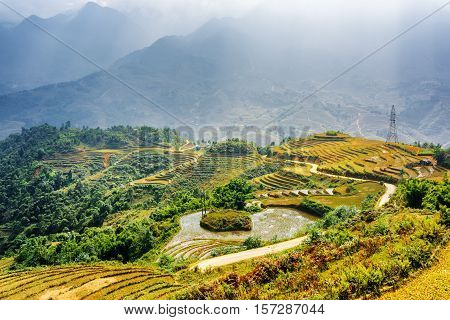 Scenic View Of Rice Terraces Filled With Water In Vietnam