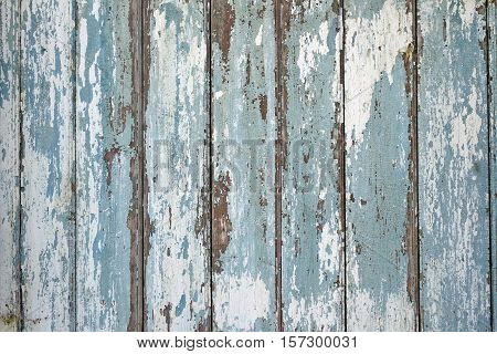 Old Peeled Blue Shabby Wood Wall Horizontal Vintage Background Texture