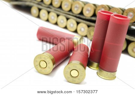 ammunition; for shotguns to hunt in the wild